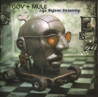 Gov't Mule - Life Before Insanity